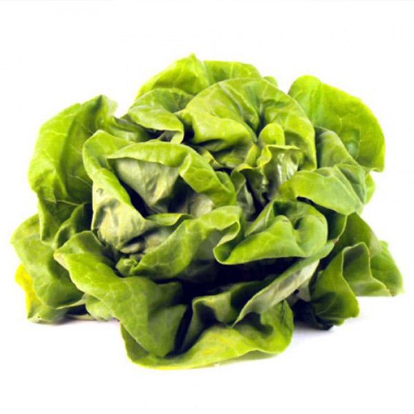 Flat Lettuce