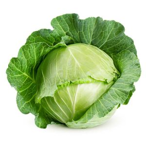 Cabbage Primo